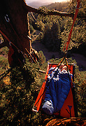 Andy Taylor and wife Connie Sinclair tucked 90 feet up in a redwood near their home in Elk.