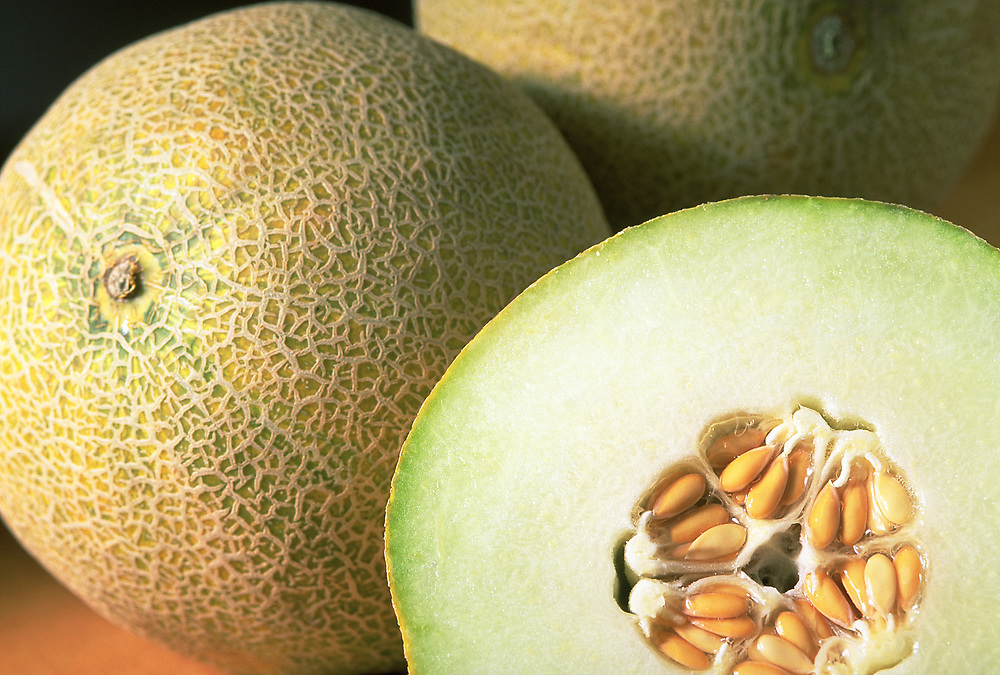 Close up selective focus photograph of <br /> a few Galia melons on a butcher block counter with one cut open