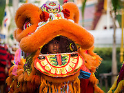 30 OCTOBER 2014 - BANGKOK, THAILAND: A Chinese style lion dancer during the parade marking the start of the temple's annual fair. Wat Saket is on a man-made hill in the historic section of Bangkok. The temple has golden spire that is 260 feet high which was the highest point in Bangkok for more than 100 years. The temple construction began in the 1800s in the reign of King Rama III and was completed in the reign of King Rama IV. The annual temple fair is held on the 12th lunar month, for nine days around the November full moon. During the fair a red cloth (reminiscent of a monk's robe) is placed around the Golden Mount while the temple grounds hosts Thai traditional theatre, food stalls and traditional shows.   PHOTO BY JACK KURTZ