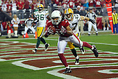 2009 Packers at Cardinals NFC Wild Card