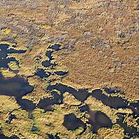 Sept 2009 Yamal Peninsula, Siberia, Russia - global warming impacts story on the Nenet people , reindeer herders in the Yamal Peninsula tundra shot