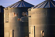Morning light on grain bins