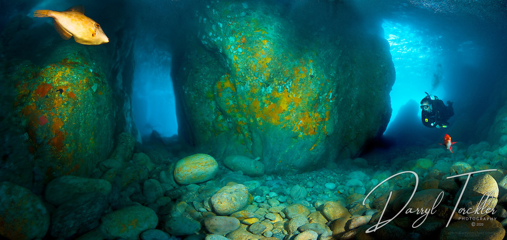 Underwater panorama of the Honeycomb dive site, the main entrance is to the right behind diver, to the left goes to the hall way to another cave opening.  Best in calm conditions only, do not try to dive with a swell running. Hongiora island, Alderman islands. New Zealand.