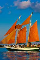 Jolly Rover II sailing off Key West, Florida Keys, Florida USA