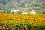 The village of Montpeyroux. Montpeyroux. Languedoc. France. Europe. Vineyard.