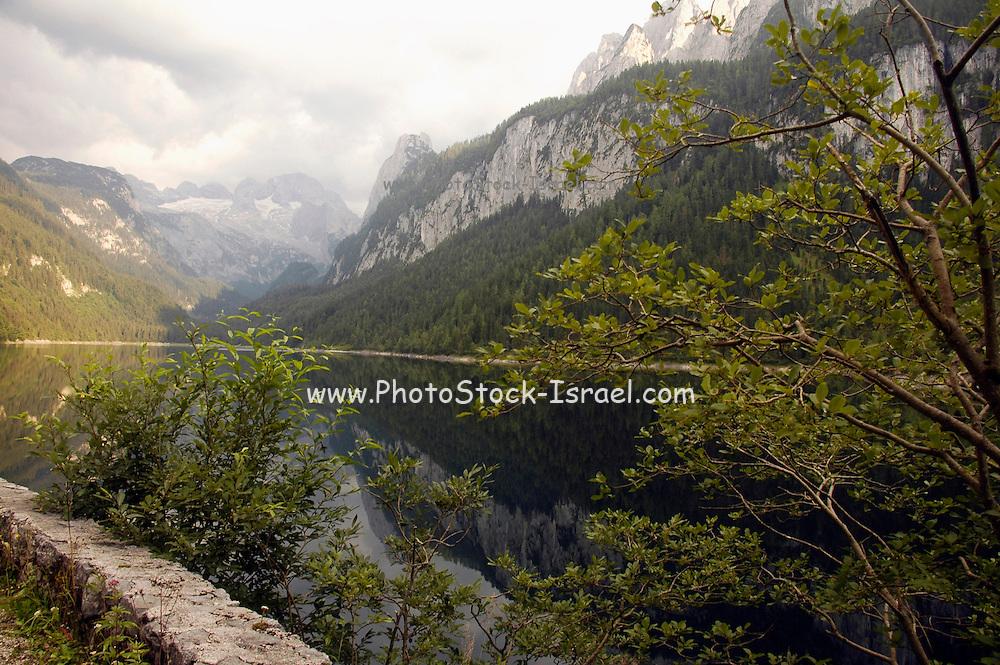 Austria, Upper Austria, Gosau, Lake Gosau in the Dachstein Mountains Dachstein Glacier in the background