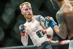 Paddy Holohan of Ireland fights Vaughan Lee of England in their flyweight fight during the UFC Fight Night at Glasgow on Saturday, July 18 at The SSE Hydro, Glasgow. The UFC Fight Night 72 event was the first the promotion had been hosted in Scotland.