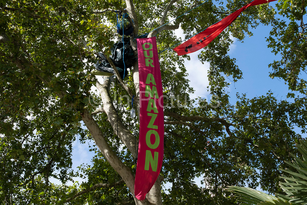 Protesters high up in trees in Parliament Square hang a banner reading 'Our Amazon' at Extinction Rebellion demonstration on 4th September 2020 in London, United Kingdom. With government resitting after summer recess, the climate action group has organised two weeks of events, protest and disruption across the capital. Extinction Rebellion is a climate change group started in 2018 and has gained a huge following of people committed to peaceful protests. These protests are highlighting that the government is not doing enough to avoid catastrophic climate change and to demand the government take radical action to save the planet.