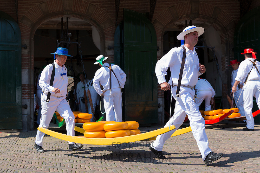 Porters / carriers carrying wheels / rounds of Gouda cheese by stretcher from Weigh House, Alkmaar cheese market, The Netherlands