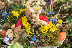 Close-up of Easter bunnies with Easter eggs on nest