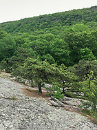 Cornwall, New York - A view of the easter ridge of Schunnemunk Mountain seen from the western ridge during a hike on May 28, 2018.