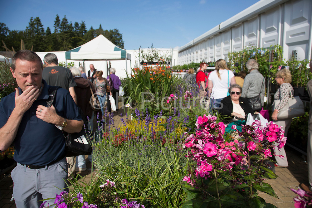 Harrogate Flower Show, North Yorkshire, England, UK. People outside in the show grounds.