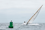 Mah Jong sailing in the Opera House Cup.