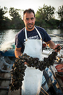 Costa Rei, Sardinia, Italy, June 2015. the fishermen of Peschiera di San Giovanni process their mussles, clams, fresh fish and oysters at a tidal lagoon. Costa Rei is located on the south coast of Sardinia about 50km from Cagliari. The coastline is renowned for its crystal clear water, golden sands and long beaches. Photo by Frits Meyst / MeystPhoto.com