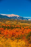 Autumn color, Collegiate Peaks (Rocky Mountains) along Highway 285 near Nathrop, Colorado USA.