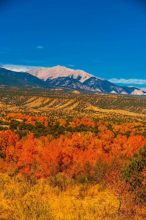 Autumn color, Collegiate Peaks (Rocky Mountains) along Highway 285 near Nathrop, Colorado USA.