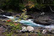 Sol Duc River, Olympic National Park, Washington.