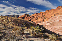 Red Rock Canyon is located just outside of Las Vegas, Nevada. It is a beautiful desert landscape with colorful rock formations, distant mountains, and a nice view back toward the city. There is a scenic loop drive that allows you to see a lot of the park and stop at some overlooks. This is also a popular climbing destination.