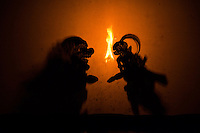 Wayang kulit or shadow puppet theater - Performances of shadow puppet theater are accompanied by gamelan in Indonesia. .UNESCO designated Wayang Kulit  as a Masterpiece of Oral and Intangible Heritage of Humanity in 2003.