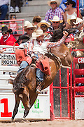 Bareback rider Anthony Thomas hangs on to his bronco during the Bareback Championships at the Cheyenne Frontier Days rodeo in Frontier Park Arena July 26, 2015 in Cheyenne, Wyoming. Frontier Days celebrates the cowboy traditions of the west with a rodeo, parade and fair.