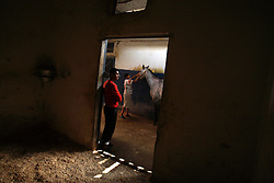 A man is seen grooming a horse in a stable near the racetrack in Beirut, Lebanon, March 23, 2006. The track caters to mostly working class Lebanese.