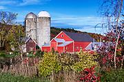 Colorful autumn farm, Jeffersonville, Vermont, USA.