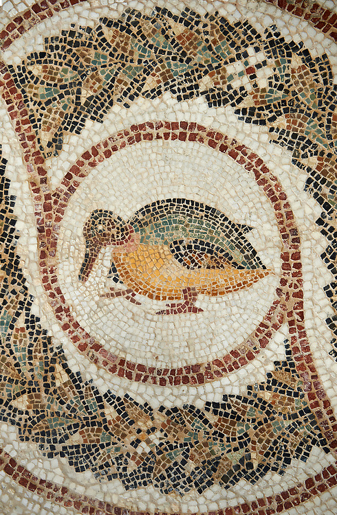 Picture of a Roman mosaics design depicting a bird, from the ancient Roman city of Thysdrus. 3rd century AD. El Djem Archaeological Museum, El Djem, Tunisia. .<br /> <br /> If you prefer to buy from our ALAMY PHOTO LIBRARY Collection visit : https://www.alamy.com/portfolio/paul-williams-funkystock/roman-mosaic.html . Type - El Djem - into the LOWER SEARCH WITHIN GALLERY box. Refine search by adding background colour, place, museum etc<br /> <br /> Visit our ROMAN MOSAIC PHOTO COLLECTIONS for more photos to download as wall art prints https://funkystock.photoshelter.com/gallery-collection/Roman-Mosaics-Art-Pictures-Images/C0000LcfNel7FpLI