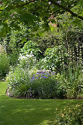 Early summer border with Geranium 'Johnson's Blue', Libertia grandiflora and sisyrinchium