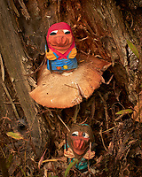 Mushroom Hunting Trolls found a Big One. Image taken with a Leica CL camera and 55-135 mm lens (ISO 320, 135 mm, f/8, 1/250 sec).