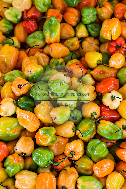 Fresh Jamaican hot peppers at Benito Juarez market in Oaxaca, Mexico.