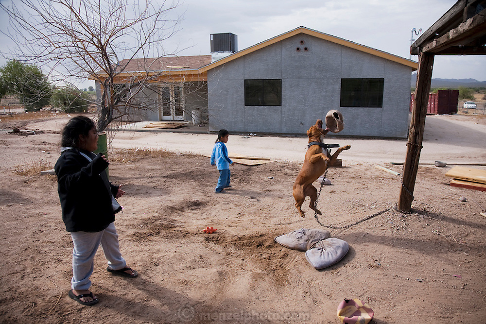 Assistant carpenter and tattooist Louie Soto's children play with a pitbull at their new home, financed by casino profits and built by the Gila River Indian Community. (From the book What I Eat: Around the World in 80 Diets.)