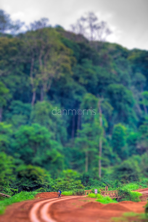 Tourist rides motorcycle through jungle in Mondulkiri province, Cambodia