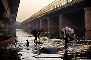 28th May 2014, Yamuna River, New Delhi, India. Mahouts stand on bathing elephants in the Yamuna river  in New Delhi, India on the 28th May 2014<br /> Elephant handlers (Mahouts) eke out a living in makeshift camps on the banks of the Yamuna River in New Delhi. They survive on a small retainer paid by the elephant owners and by giving rides to passers by. The owners keep all the money from hiring the animals out for religious festivals, events and weddings, they also are involved in the illegal trade of captive elephants. The living conditions and treatment of elephants kept in cities in North India is extremely harsh, the handlers use the banned 'ankush' or bullhook to control the animals through daily beatings, the animals have no proper shelters are forced to walk on burning hot tarmac and stand for hours with their feet chained together. <br /> <br /> PHOTOGRAPH BY AND COPYRIGHT OF SIMON DE TREY-WHITE<br /> + 91 98103 99809<br /> email: simon@simondetreywhite.com photographer in delhi