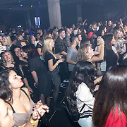 NLD/Rotterdam/20161102 - MTV Music Week Official Opening Party 2016,
