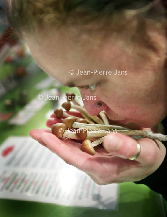 Nederland, Amsterdam,17 november 2008..Al per 1 december worden paddo's verboden. Dat is het gevolg van een nog niet bekend gemaakt besluit dat de ministerraad vrijdag heeft genomen op initiatief van minister Ab Klink van Volksgezondheid...Deze week zal de koningin het besluit ondertekenen en dan wordt het paddoverbod alsnog openbaar gemaakt. De zogeheten Algemene Maatregel van Bestuur waarmee het kabinet de hallucinogene paddenstoelen naar de verboden categorie van de opiumwet verwijst, wordt per 1 december van kracht...Een meerderheid van de Tweede Kamer gaf eerder al aan de paddo te willen verbieden, onder meer na de zelfmoord onder invloed van paddo's door een Frans meisje. De Raad van State heeft de afgelopen maanden de mogelijkheid van een paddoverbod onderzocht en zag daar ook geen beletsel voor...De Vereniging Landelijk Overleg Smartshops (Vlos) reageert teleurgesteld en stapt naar de rechter in een laatste poging het verbod te voorkomen. De smartshops zijn boos dat de financiële consequenties voor hun branche nauwelijks aan bod zijn gekomen in de Tweede Kamer..Magic mushrooms are legally banned. The ban was accelerated by the death of a young French girl in Amsterdam. The smartshops are very angry.