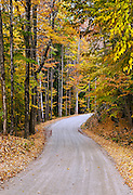 Unpaved country road in autumn, Vermont, USA