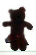 silhouette teddy bear with skirt down
