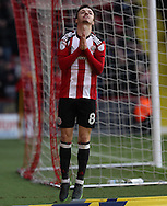 Stefan Scougall of Sheffield United after missing on goal during the English Football League One match at Bramall Lane, Sheffield. Picture date: December 31st, 2016. Pic Jamie Tyerman/Sportimage