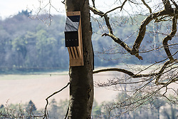 Wendover, UK. 9th April, 2021. A bat box is pictured during tree felling operations for the HS2 high-speed rail link in Jones Hill Wood. Tree felling work began this week, in spite of the presence of resting places and/or breeding sites for pipistrelle, barbastelle, noctule, brown long-eared and natterer's bats, following the issuing of a bat licence to HS2's contractors by Natural England on 30th March.