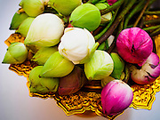 11 JANUARY 2015 - BANGKOK, THAILAND:  Lotus buds used in merit making at Wat Dhamma Mongkol. Thousands of Buddhists gathered at the temple to practice the Eight Precepts during a three day retreat. Buddhist precepts are moral guidelines Buddhists follow rather than commandments in the Christian sense of the word. As Buddhists develop in the Dhamma, they find that the Precepts grounds their practice. One cannot waver and purposely break any of the Precepts. The Eight Precepts are typically also practiced during intensive meditation retreats of one day or longer. Wat Dhamma Mongkol, (pronounced 'Dhammamongkon') is on the edge of Bangkok, and visible from a number of places, especially from the elevated expressways around the city. The temple was started in the early 1960s by a revered monk who had spent more than 20 years in a forest retreat. The 95 meter high tower, completed in 1985, is a modern rendition of the tower that now marks the place of the Buddha's enlightenment in Bodhgaya, India. There are classrooms, a museum and meditation area inside the tower. The largest Buddha statue carved from a single piece of jade is on the temple grounds.   PHOTO BY JACK KURTZ