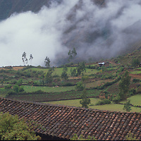 Unamen Villag near Bolivar, in cloud forests of northern Andes.