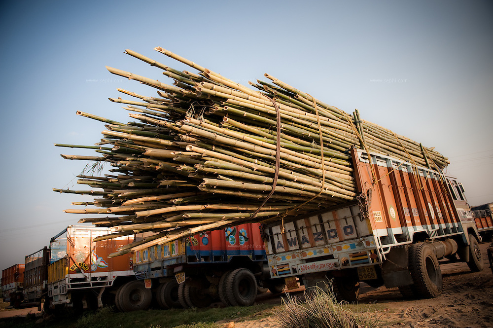 Standing truck with the load of bamboo in Kolkata.