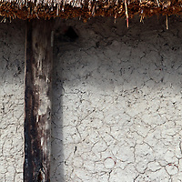 Africa, Botswana, Okavango Delta. Dwelling of dung, mud and reeds in the Okavango.