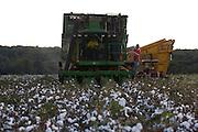 Centralina_MG, Brasil...Colheita de algodao em Centralina...Cotton harvesting in Centralina...Foto: LEO DRUMOND / NITRO