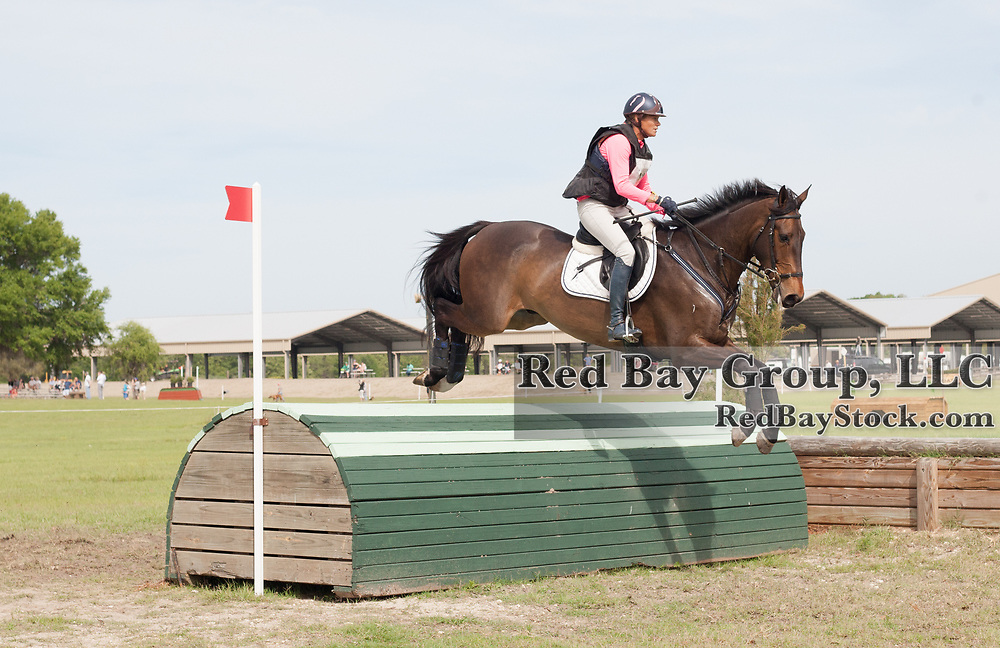 Lesley Grant-Law and Harthill Diamond at the Ocala International in Ocala, Florida.