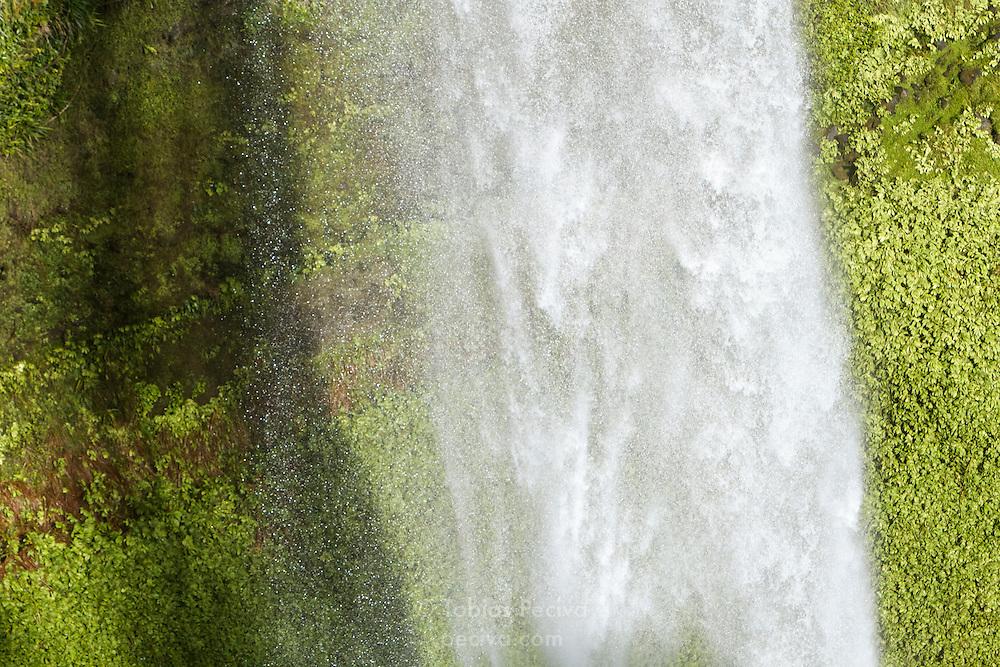 Detail of Bridal Veil Falls / Waireinga, near Raglan, New Zealand.