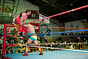 Alicia Flores female wrestler in the ring climbing on the ropes to perfrom move on male opponent, crowd in background. Lucha Libre wrestling origniated in Mexico, but is popular in other latin Amercian countries, including in La Paz / El Alto, Bolivia. Male and female fighters participate in the theatrical staged fights to an adoring crowd of locals and foreigners alike.