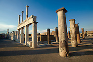 Doric & Corinthian columns of the Roman colonade in the Forum of Pompeii. .<br /> <br /> If you prefer to buy from our ALAMY PHOTO LIBRARY  Collection visit : https://www.alamy.com/portfolio/paul-williams-funkystock/pompeii.html<br /> Visit our CLASSICAL WORLD HISTORIC SITES PHOTO COLLECTIONS for more photos to buy as buy as wall art prints https://funkystock.photoshelter.com/gallery-collection/Classical-Era-Historic-Sites-Archaeological-Sites-Pictures-Images/C0000g4bSGiDL9rw