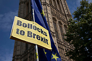 Anti Brexit Bollocks to Brexit placard and European Flags in Westminster as it is announced that Boris Johnson has had his request to suspend Parliament approved by the Queen on 28th August 2019 in London, England, United Kingdom. The announcement of a suspension of Parliament for approximately five weeks ahead of Brexit has enraged Remain supporters who suggest this is a sinister plan to stop the debate concerning a potential No Deal.