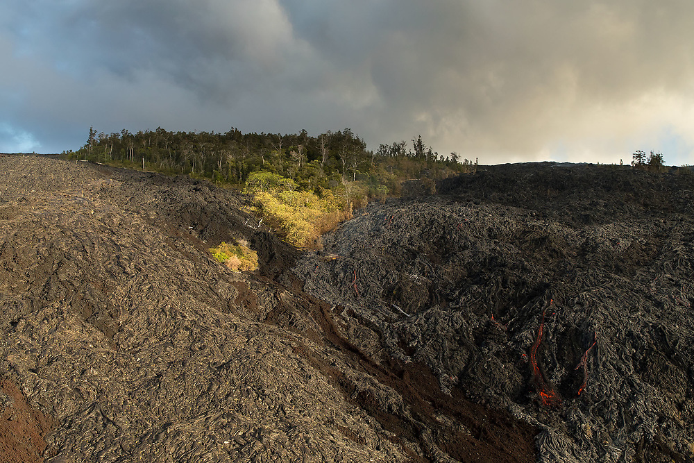 HISTORIC AND ACTIVE LAVA FLOWS AROUND NATIVE FOREST (AERIAL VIEW), HAWAII VOLCANOES NATIONAL PARK, HAWAII